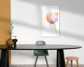 Tulpe von Hennie Zeij