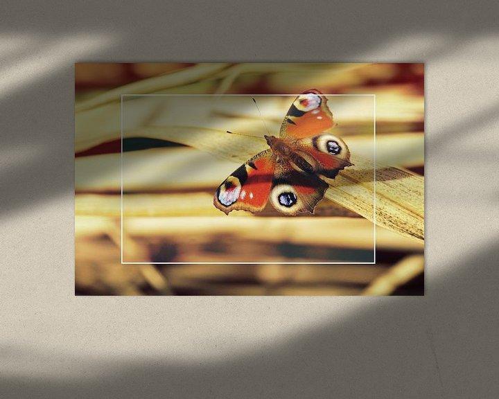 Sfeerimpressie: Vlinder op bamboe van Wieland Teixeira