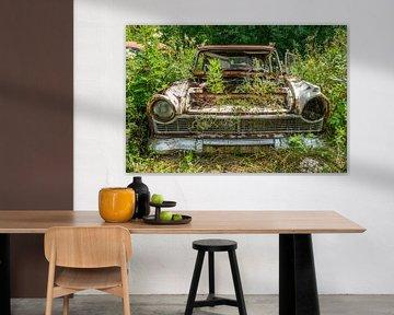 Oude verlaten auto overgenomen door de natuur. van Axel Weidner