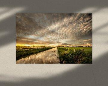 Ribbeltjeswolken boven het Haagse Beemdenbos van Cees van Gastel