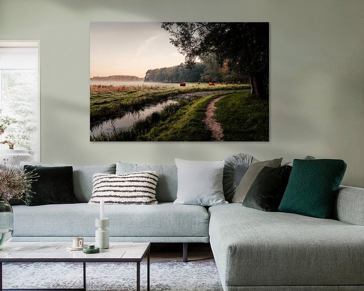 Sfeerimpressie: Schotse Hooglanders in het Leeuwarder Bos van Nando Foto