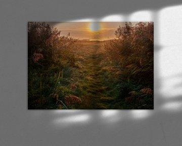 Natuurlandschap Waverhoek van Marcel van Balken