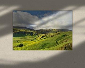 Groene vallei in IJsland van Renzo de Jonge