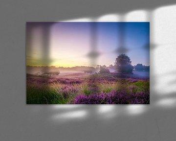 Mist op de heuvels met heide op de Posbank van Arjan Almekinders