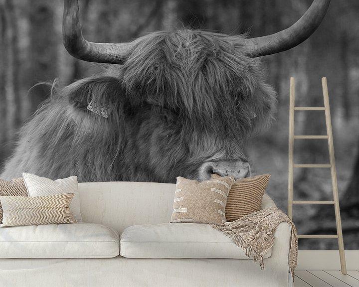 Sfeerimpressie behang: Schotse hooglander liggend in het bos van Michel Knikker