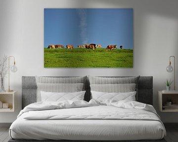 Kühe auf der weide von Ulrike Leone