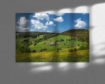 Schwarzwaldhaus im Glottertal, Schwarzwald von Markus Lange
