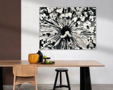 uitgebloeide bloem van Marieke Funke