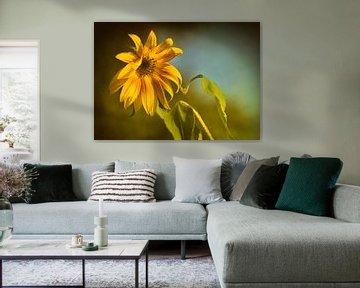 Sonnenblume von Dieter Beselt