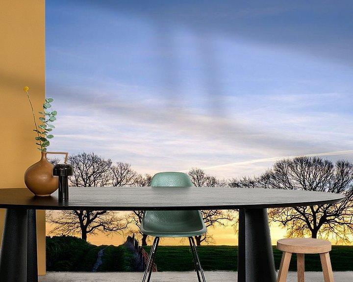 Beispiel fototapete: Silhouette der Bäume von Johan Vanbockryck