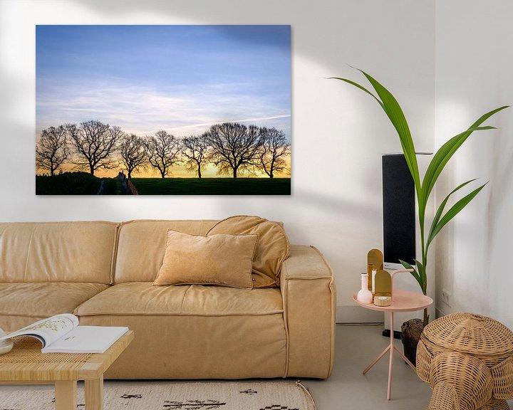 Beispiel: Silhouette der Bäume von Johan Vanbockryck