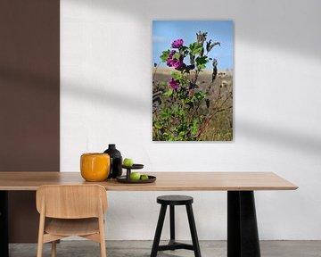 Violette Blume von FotoGraaG Hanneke