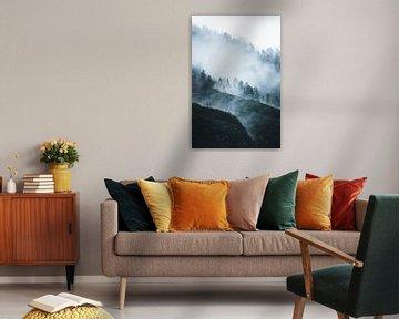 Wolken durch den Wald von Dylan Shu