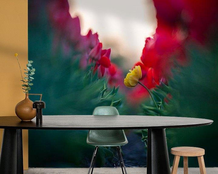 Beispiel fototapete: Einsame Blume von koennemans