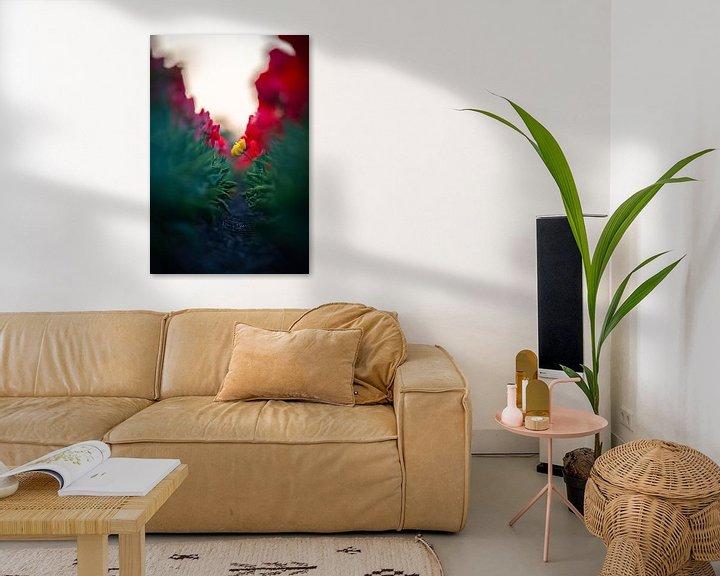 Beispiel: Einsame Blume von koennemans