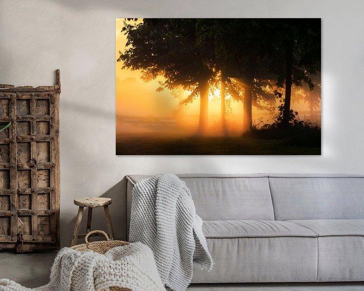 Beispiel: Sonnenstrahl durch Bäume von koennemans