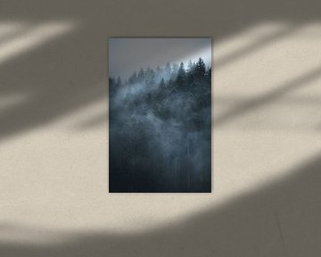 Mist door het bos van Dylan Shu