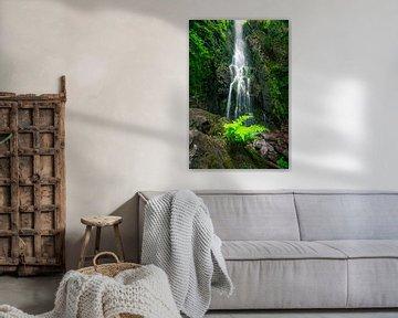 Burgbachwasserfall mit grünem Vordergrund von Christian Klös