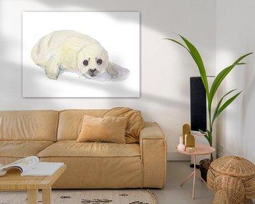 Zeehond pup, huiler op witte geisoleerde achtergrond van Yvette Stevens