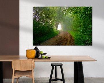 The Green Mile... (Bospad naar het licht) van Caroline Lichthart