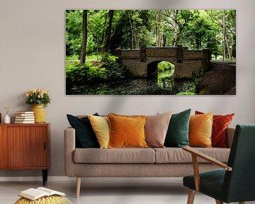 Naturfoto eines niederländischen Parks mit alten Bäumen, einer Brücke und Gräben von MICHEL WETTSTEIN