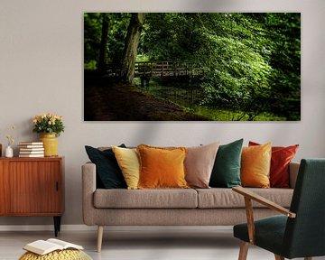 Naturbild eines niederländischen Parks mit alten Bäumen, einer Holzbrücke und Gräben von MICHEL WETTSTEIN