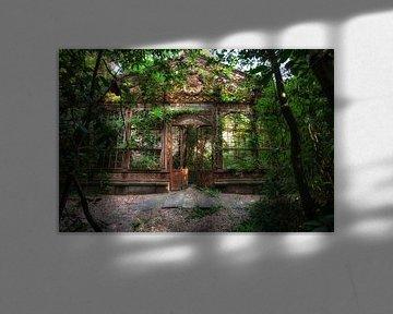 Das Gewächshaus 4 von Kirsten Scholten