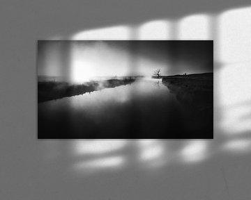 Morgenbarsch von Tim Newnham Photography