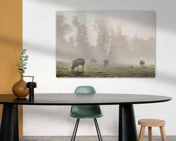 Schafe auf der Wiese von Elianne van Turennout