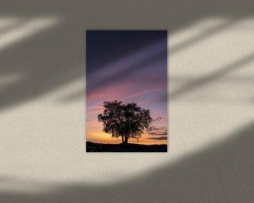 Zonsondergang op de Ermelosche heide II