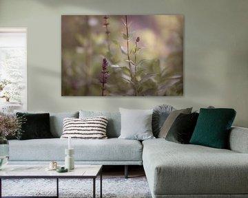 Blumen Teil 8 von Tania Perneel