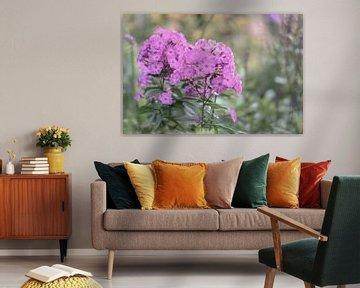 Blumen Teil 10 von Tania Perneel