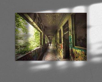 Stadterkundung verlassener Gebäude Belgien urbex von Peter Haastrecht, van