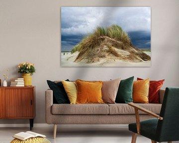 Dune van Eva Overbeeke