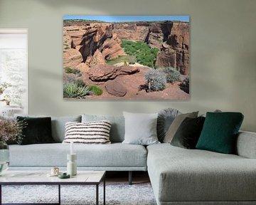 Amerika, Canyon de Chelly, Arizona van Bernard van Zwol