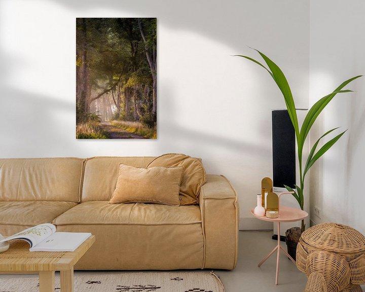 Sfeerimpressie: Magisch bospad van Patrick Rodink