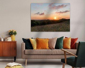 Sonnenuntergang Møns von Daniel Van der Brug