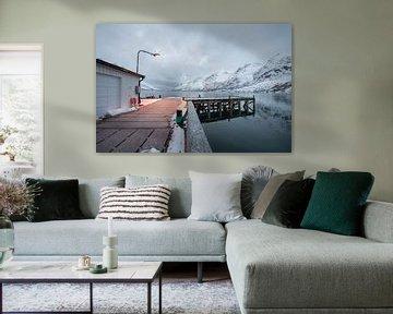 Ersfjordfjord, Noorwegen van Daniel Van der Brug