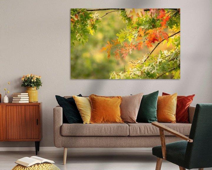 Sfeerimpressie: Herfst is gekomen van Tashina van Zwam