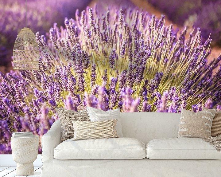 Sfeerimpressie behang: Lavendelveld op het Plateau de Valensole, Provence, Frankrijk van Christian Müringer