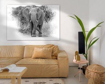 Elefant in Südafrika von Gunter Nuyts