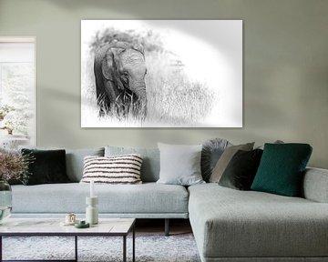 Elefantenbaby, Südafrika. von Gunter Nuyts