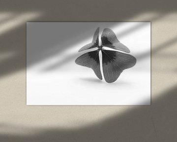 Klavertjevier zwart wit van JM de Jong-Jansen
