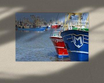 Niederlande, Hafen von Lauwersoog von Bernard van Zwol