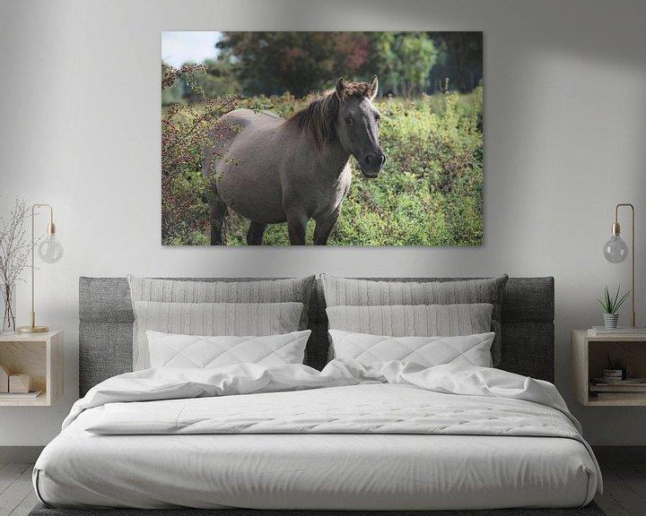 Sfeerimpressie: Konikpaard in het wild van Cristel Brouwer