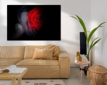 Rote Rose umgeben von Rauch. von Benjamin Admiraal