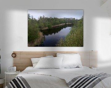 Uitzicht op een meertje midden in een bomenrijk park van Jan Verschoor