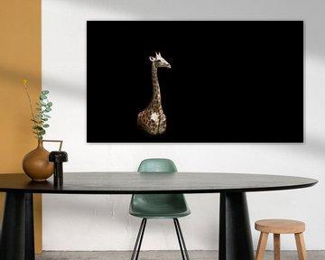 Giraffe auf Schwarz von Mario van Telgen