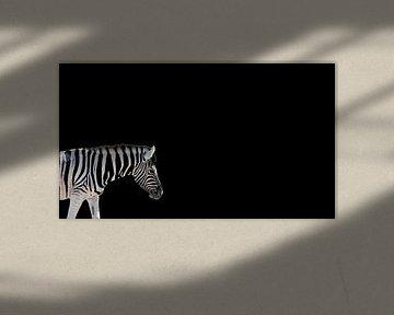 Zebra auf Schwarz (lang) von Mario van Telgen