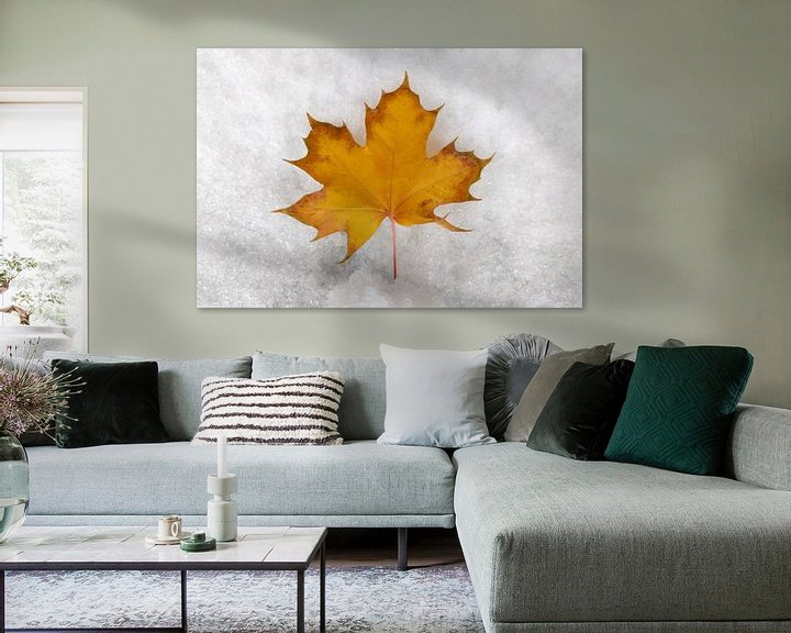 Beispiel: Herbst & Winter von Markus Jerko